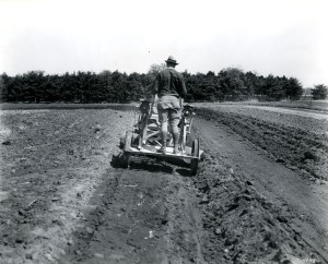 "Photograph of terrace work on an Iowa farm in June 1931 for Project No. 232, ""Studies on Soil Erosion on the Marshall Silt Loam in Page County, Iowa."" (from RS 9/2/4, box 3, folder 4)."