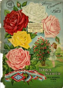 Iowa Seed Company-1913_cover