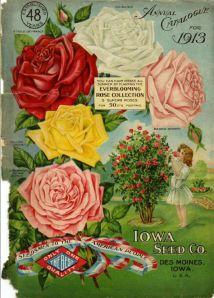 Iowa Seed Company-1913_cover