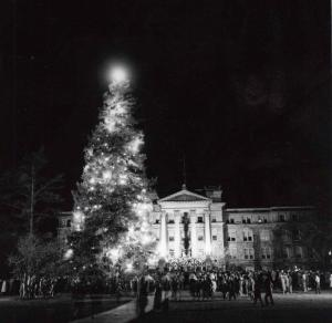 Christmas tree lighting n.d.