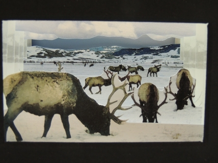 """Looking inside Timm's """"Winter Elk"""" tunnel book, so see multiple layers of elk in various positions inhabiting a winter landscape with snow-covered mountains in the background."""