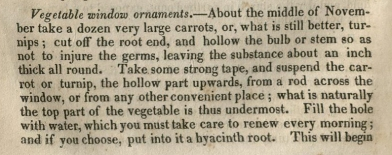 """Vegetable Window Ornaments"" in Farmer's, Mechanic's, Manufacturer's, and Sportsman's Magazine 1826, v. 1, no. 6: 238. Call Number T1 F22."