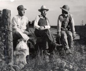Three farmers sitting on a trailer bed - possibly taking a break - with a dog, 1949. RS 16/3/D