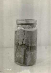 Canned meat from a canning demonstration, 1934. University Photographs, RS 16/3/F, Box 1369.