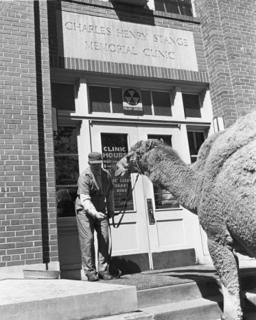 Veterinary_Medicine_College_1963