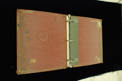 3-ring binder opened, medium brown color, silver colored metal binder.