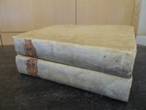 Two books bound in vellum stacked on top of each other showing leather spine labels that have been partly chipped off the spine.