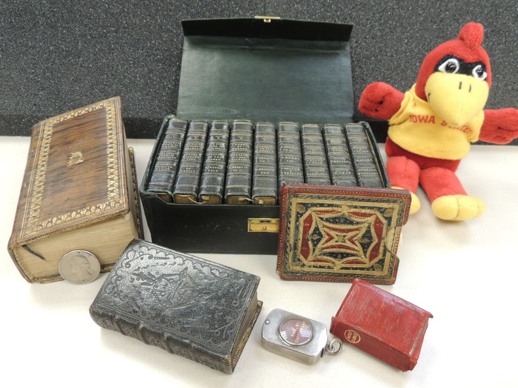 "A small stuffed animal in the shape of a red cardinal mascot wearing a yellow shirt ""Iowa State"" in red letters, sits with an assortment of tiny books."