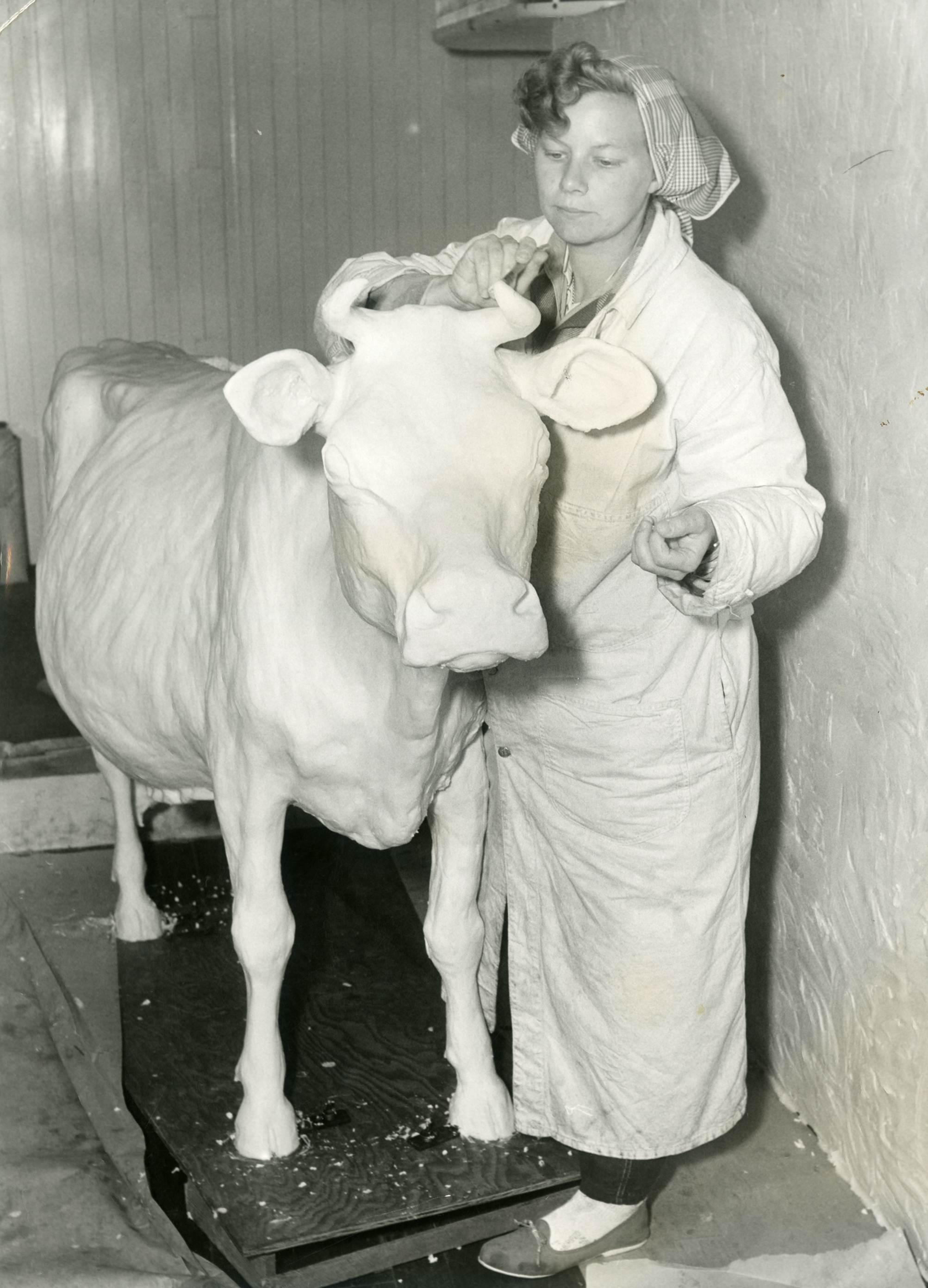 Image 003, First Butter Cow