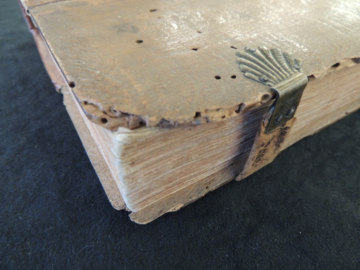 Corner of wooden board covering the book is broken off. Small holes are drilled into the wood from a burrowing insect.