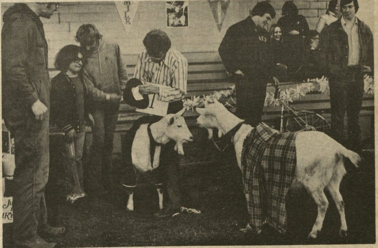 goat dressing