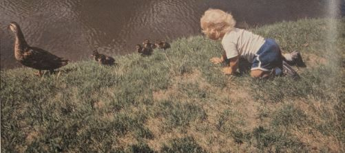 A small blonde haired child crawls on the ground behind a row of ducklings following their mother.