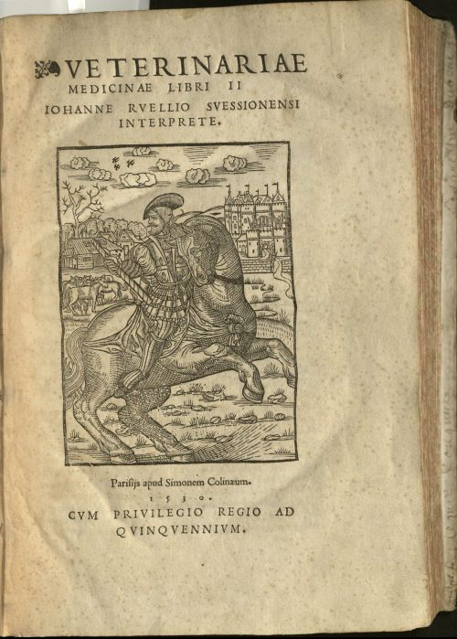 Title page of book includes large, black-and-white line illustration showing a bearded man wearing 16th century European clothing on a horse. In the background is a castle, some smaller houses, a herd of horses or other animal. Behind these are woods and a sky with clouds and a group of three flying birds.