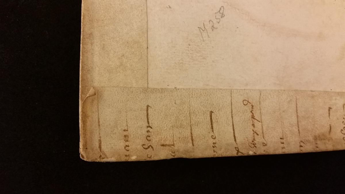 Image shows corner of inside cover with vellum covering from two sides folded one over the other.