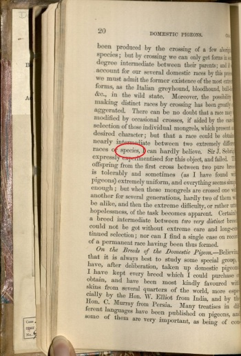 Page of text with the same word circled in red, but appears lower on the page.