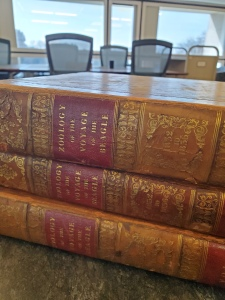 Three volumes of the Voyage of the HMS Beagle bound in leather.