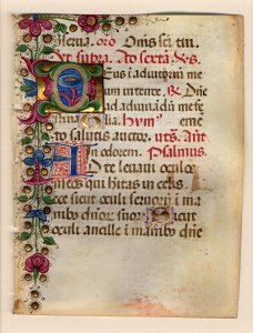 Page of Gothic script in 13 lines. Left margin and top of page decorated with a floral design in red, green, and blue inks with gold leaf. Capital letter D is contains a floral motif in three colors on a gold ground. Capital letter A in blue and red ink.