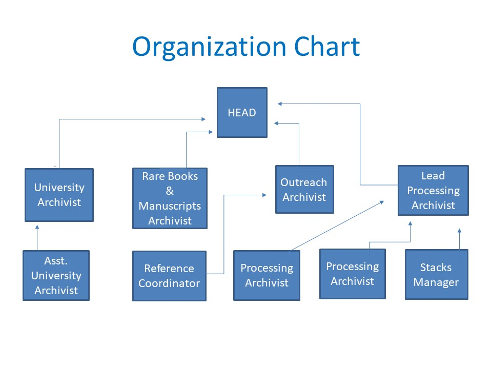 Special Collections and University Archives Organization Chart. Head of department at top, with 4 direct reports: University Archivist, Rare Books & Manuscripts Archivist, Outreach Archivist, and Lead Processing Archivist. Two Processing Archivists and the Stacks Manager report to the Lead Processing Archivist. Reference Coordinator reports to the Outreach Archivist. The Assistant University Archivist reports to the University Archivist. Color scheme is light blue squares and lines with white text inside the squares.