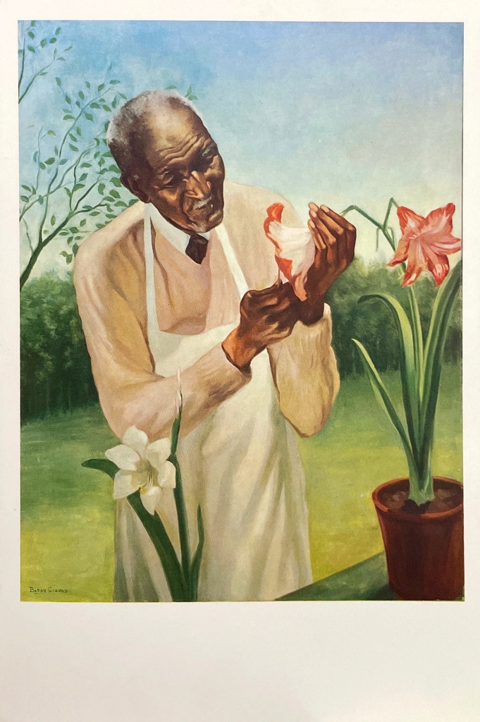 An oil painting of George Washington Carver and a plant painted by Betsy Graves Reyneau in 1942